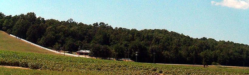 Jonesboro Arkansas Horseback Riding Tours Information