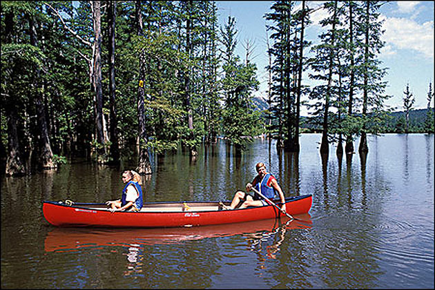 Canoeing The Little Maumelle River At Pinnacle Mountain
